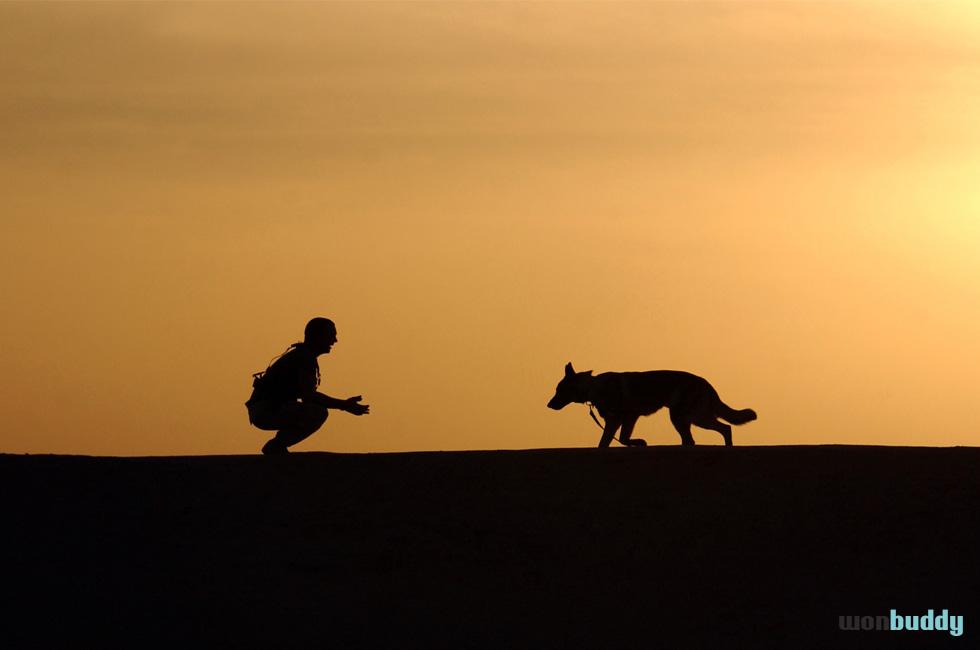 犬を買う前に心得ておきたい「犬の十戒」