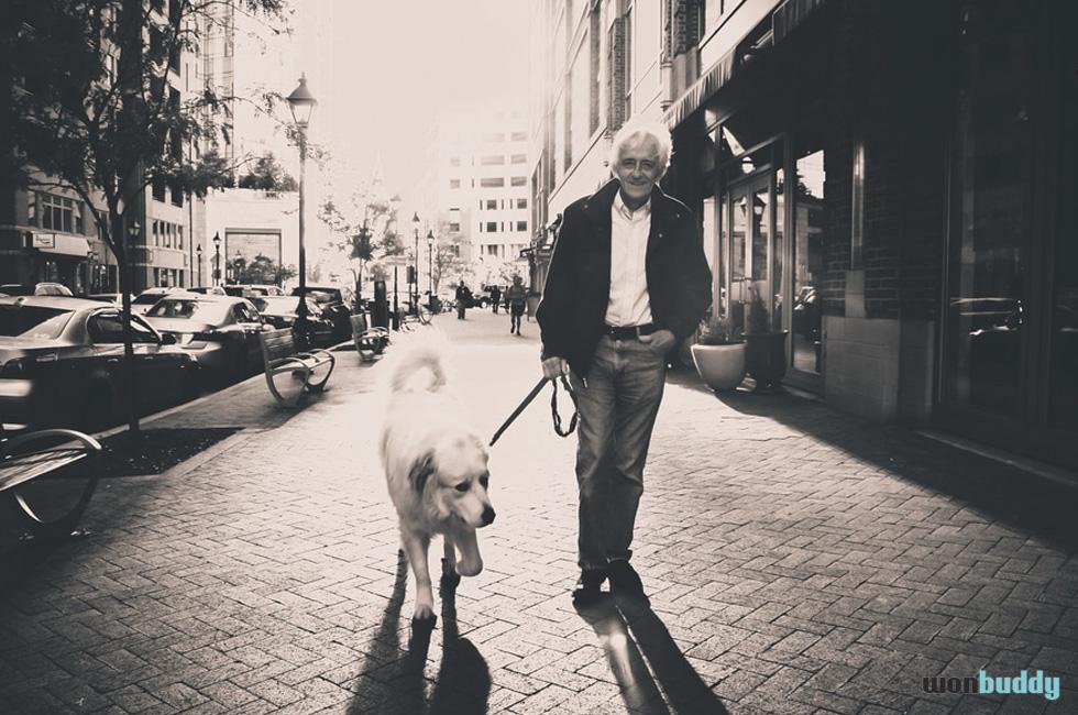 愛犬を失った悲しみを癒やす新しい方法?ペットクローンの是非
