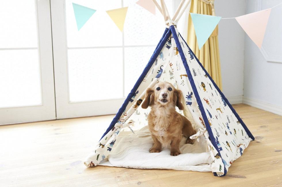 アウトドアにも最適、折りたたみ式の涼し気なテント型犬小屋
