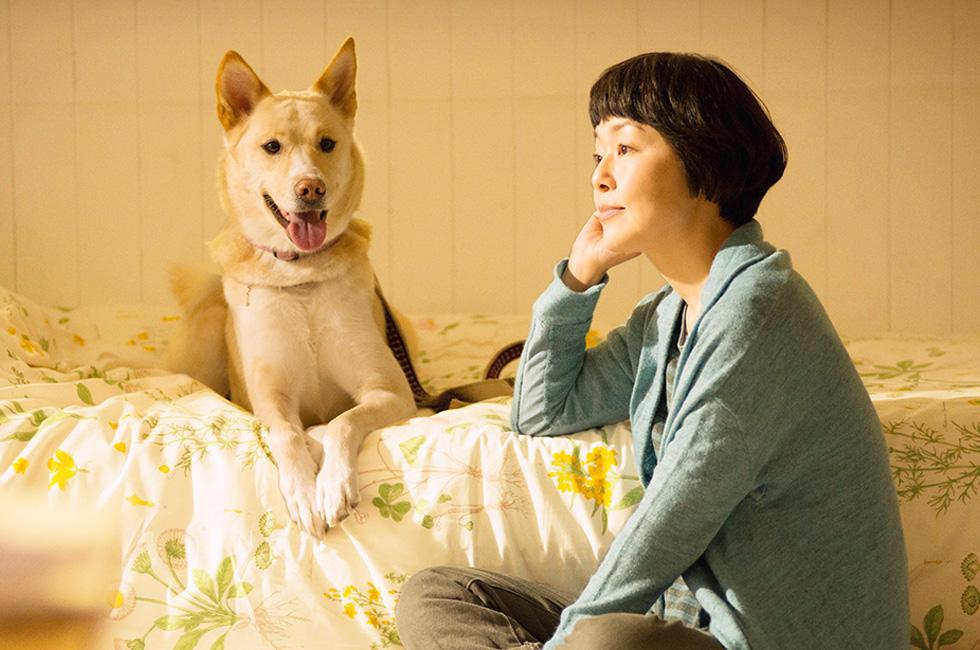 ハンカチ1枚じゃ足りない。帰る家を失った犬たちを追ったドキュメンタリー映画「犬に名前をつける日」