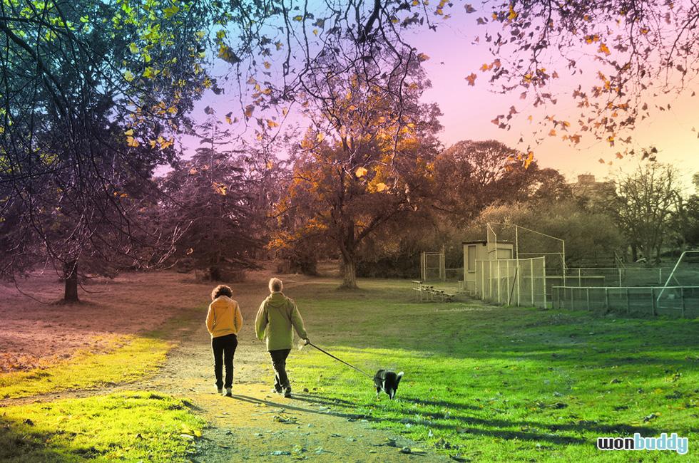 犬が飼い主の前を歩いて困っている人に。犬に後ろを歩かせる(リーダーウォーク)方法。