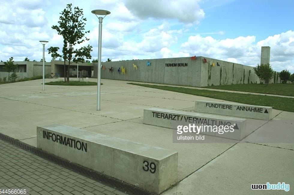 殺処分ゼロの国、ドイツの動物保護施設ティアハイムとは。