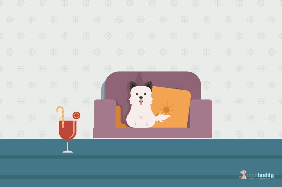室内を整理して、老犬が過ごしやすい環境を作ろう