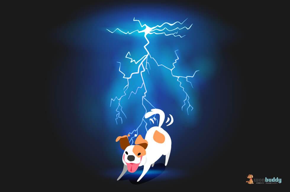 犬にとって雷は天敵。雷を怖がらせなくする方法